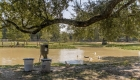duck feeder - greenwell springs home for sale